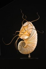 Ammonite-sculptural-lamp
