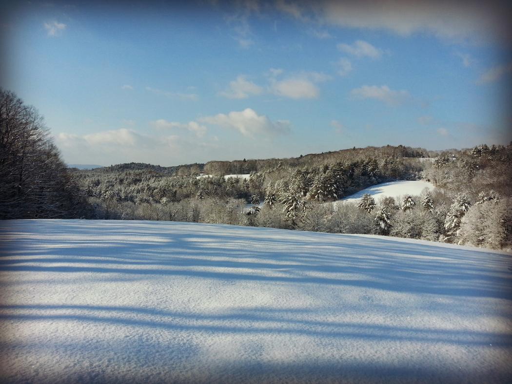 Putney in Winter