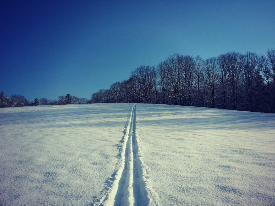 Vermont Meadow in Winter