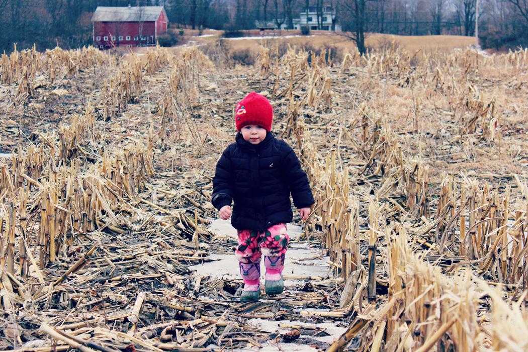 springtime on a vermont farm