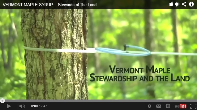 Vermont Maple Stewardship and the Land