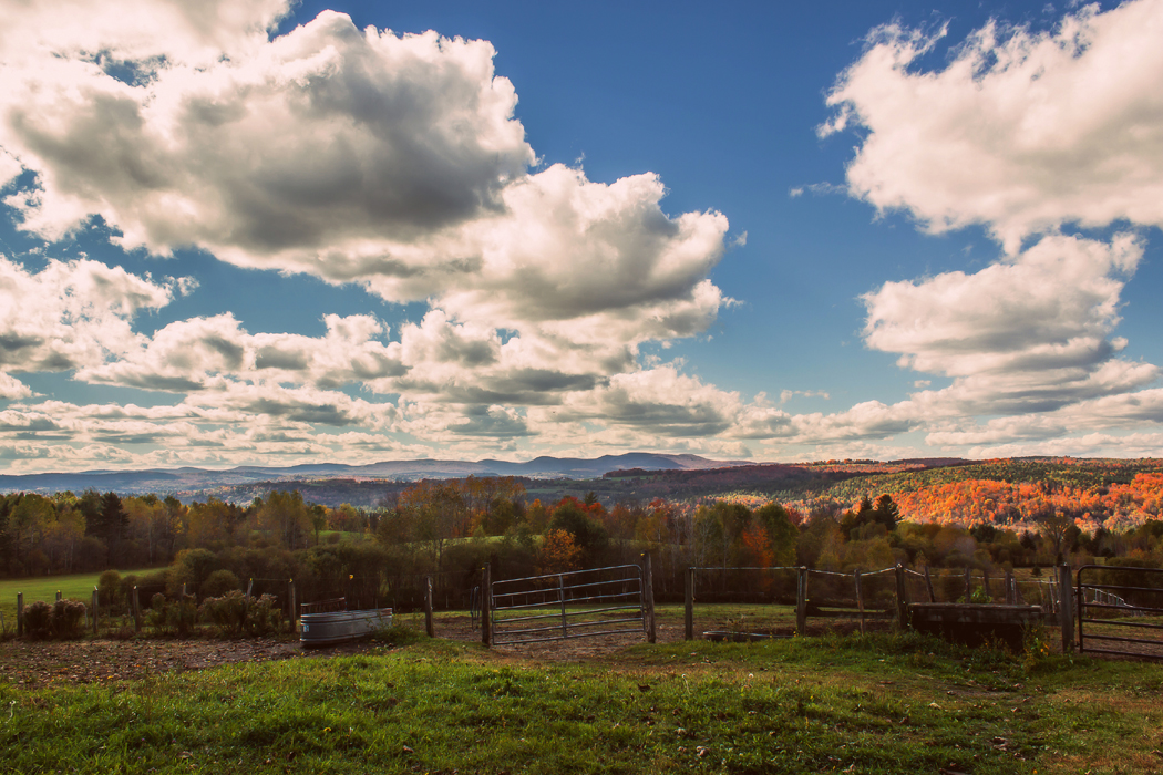 Fall Foliage and Views