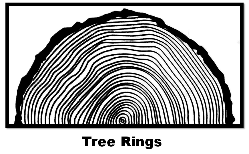Tree Rings Graphic